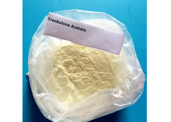 China 99.02% USP31 Anabolic Steroid Trenbolone Acetate Powder Light Yellow / Dark Yellow CAS 10161-34-9 supplier