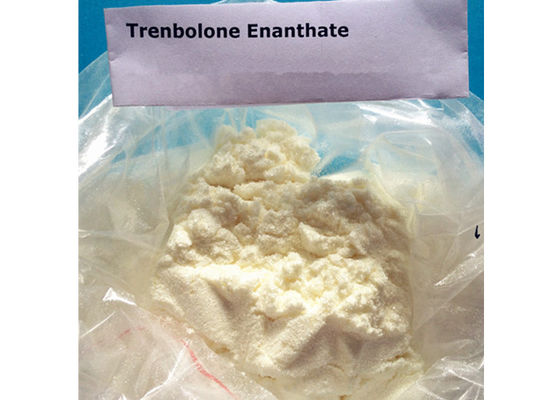 China High Purity Tren Bodybuilding Supplement , Trenbolone Enanthate Powder supplier