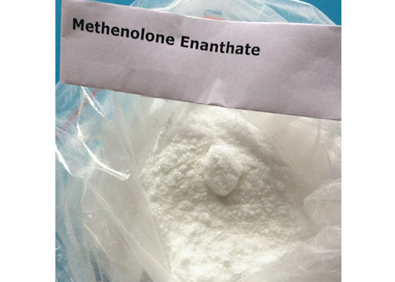 China 99.1% High Purity Injectable Anabolic Steroid Methenolone Enanthate Powder / Primobolan Depot supplier