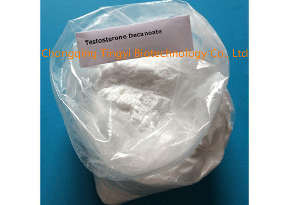 China Testosterone Decanoate CAS 5721-91-5 99% Purity Muscle Gaining Steroid Powder supplier