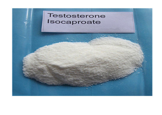 China Testosterone Isocaproate 15262-86-9 99% Purity Muscle Building Quick Effects supplier