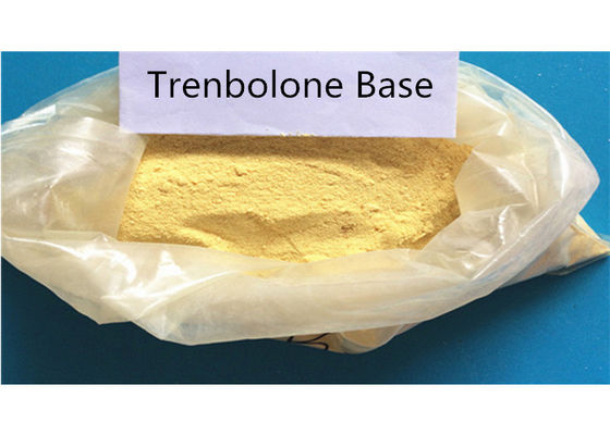 China Trenbolone Base 10161-33-8 Body Building Strong Effects 99% Purity Anabolic Steroids supplier