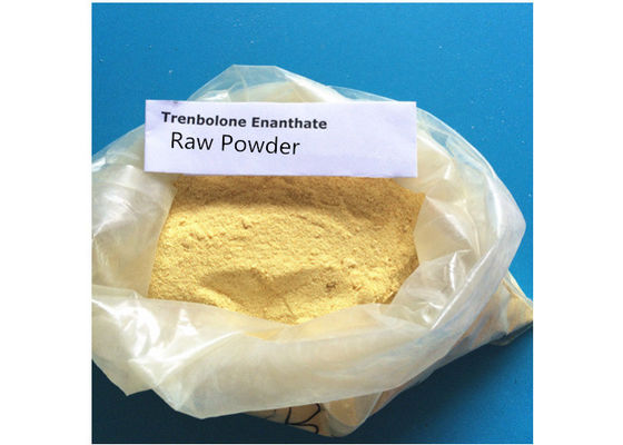 China Trenbolone Enanthate Body Building Strong Effects 99% Purity Anabolic Steroids supplier