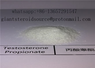 China Testosterone Propionate 57-85-2 99% Purity Muscle Building Quick Effects supplier