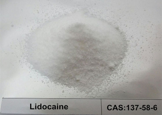 Lidocaine Base HCL Local Anesthetic Powder 99.56% Superb Special Filler CAS 137-58-6
