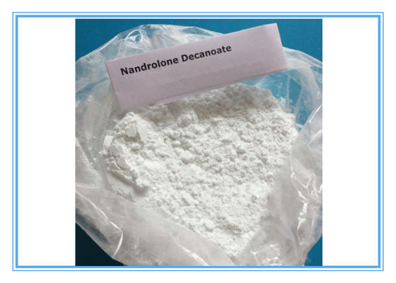 China Nandrolone Decanoate DECA 360-70-3 Body Building Quick Effects 99% Assay Fitness factory