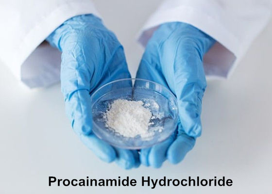 China 99% Purity Local Anesthetic Powder Procainamide Hydrochloride / Procainamide HCL CAS 614-39-1 factory