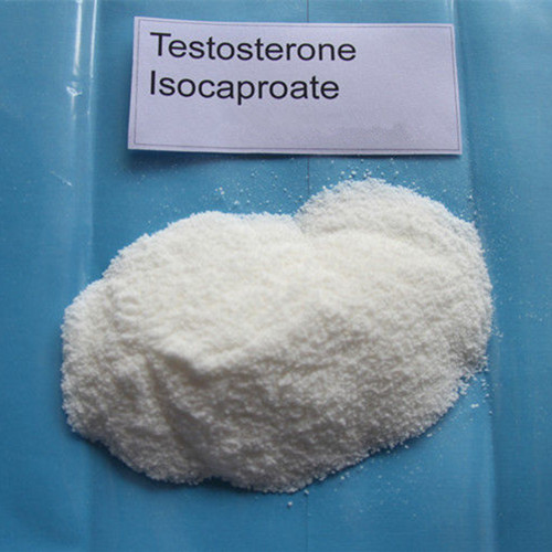 Testosterone Isocaproate 15262-86-9 99% Purity Muscle Building Quick Effects