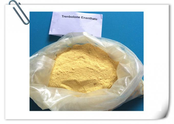 Trenbolone Enanthate Body Building Strong Effects 99% Purity Anabolic Steroids